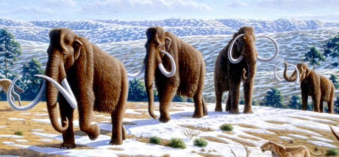 Social Networks Haven't Changed Since The Pleistocene Era